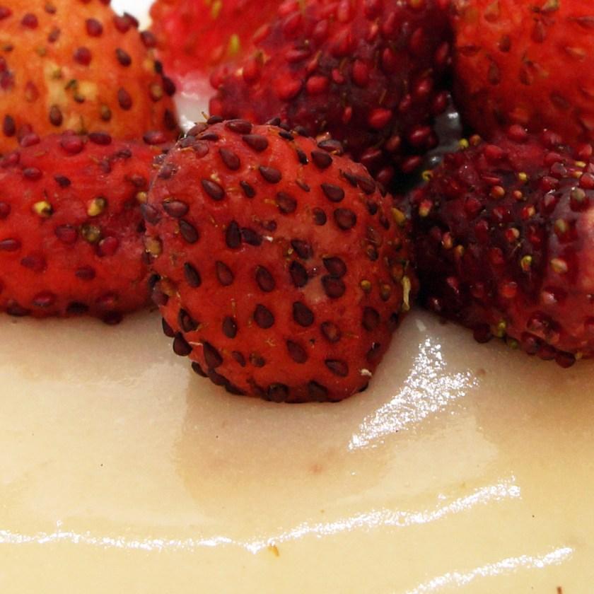 fraisier le temps et le pain