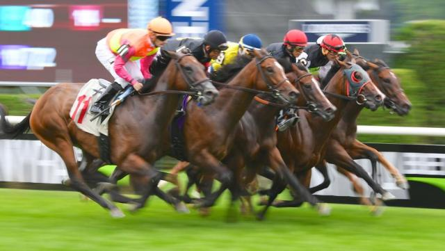 6 Horse Race Betting Tips to Try this Year