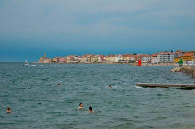 Piran swimmers
