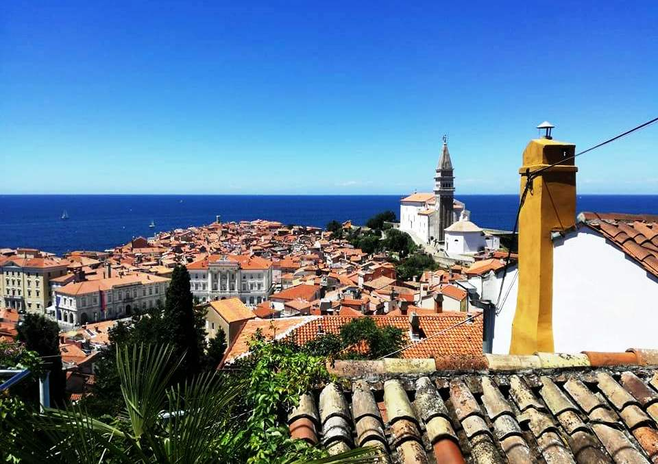 VIDEO: Discover the charms of Slovene Istria!