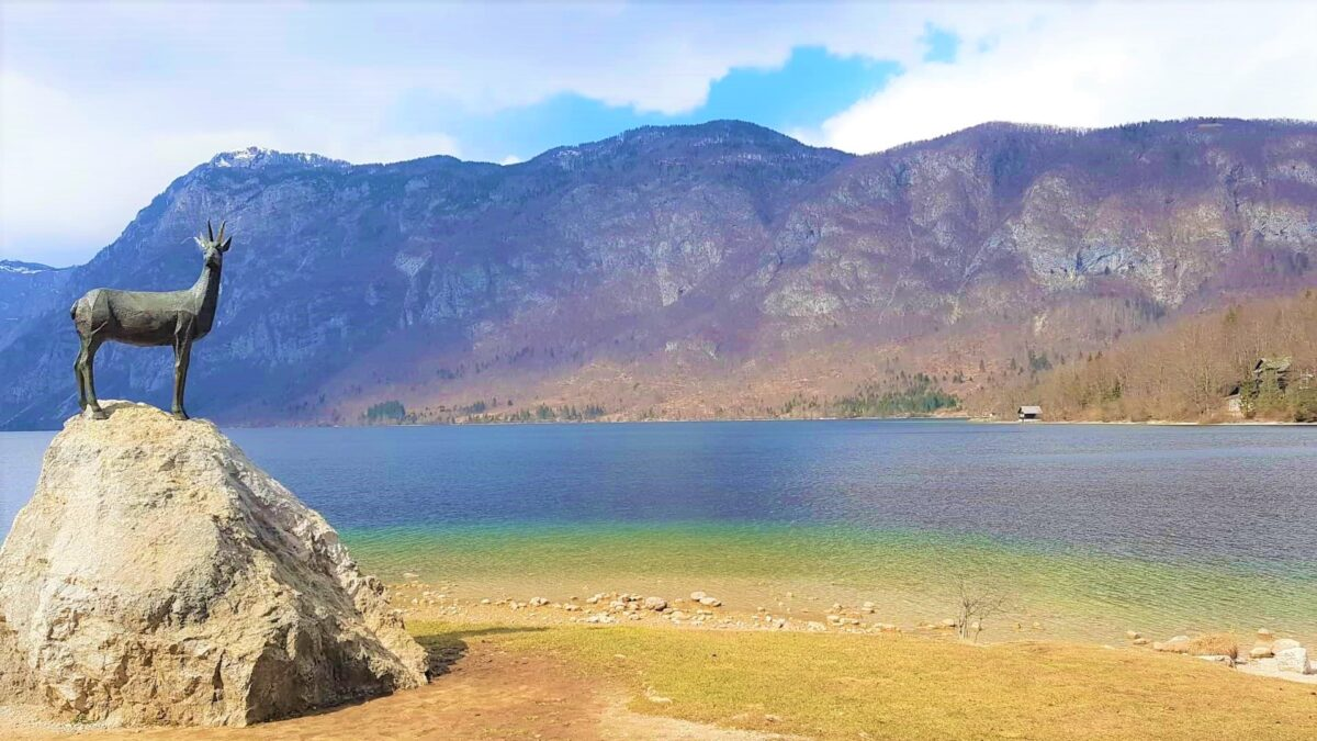 Hiking Around the ENTIRE Lake Bohinj – All You Need To Know