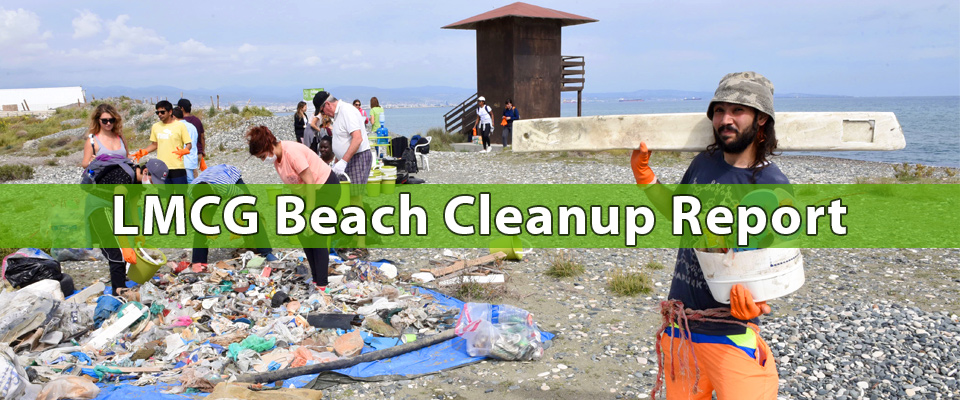 Lady's Mile Part II Beach Cleanup