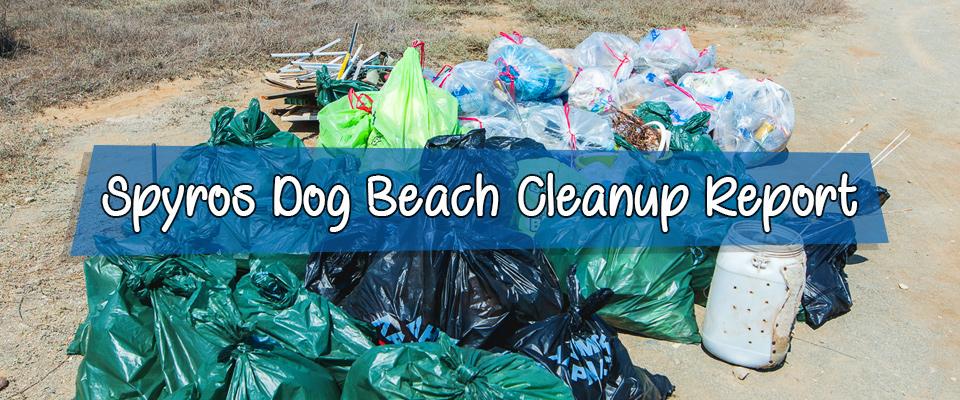 Spyros Dog Beach Clean-Up
