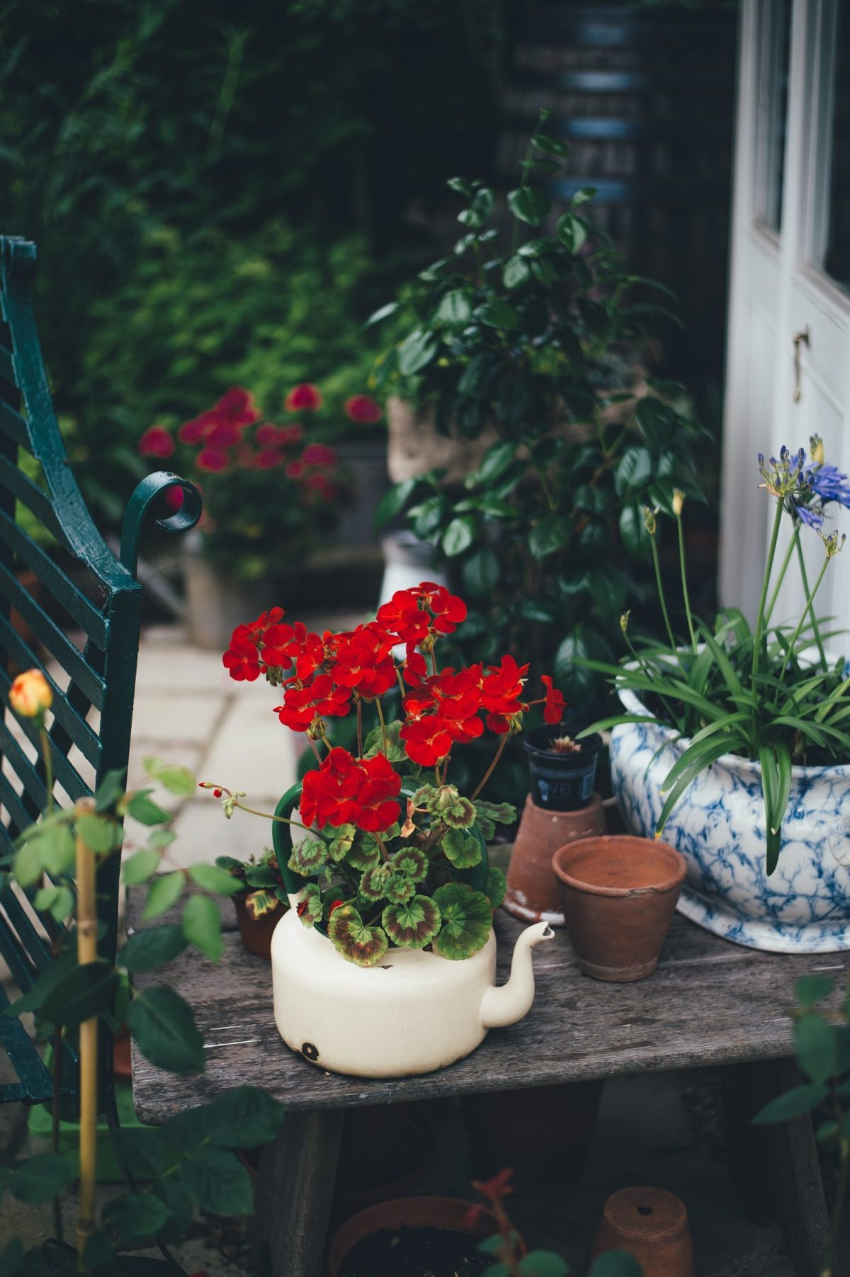 Four Reasons Why You Should Garden After A Breakup