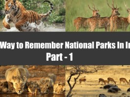 National Parks Wildlife Sanctuaries