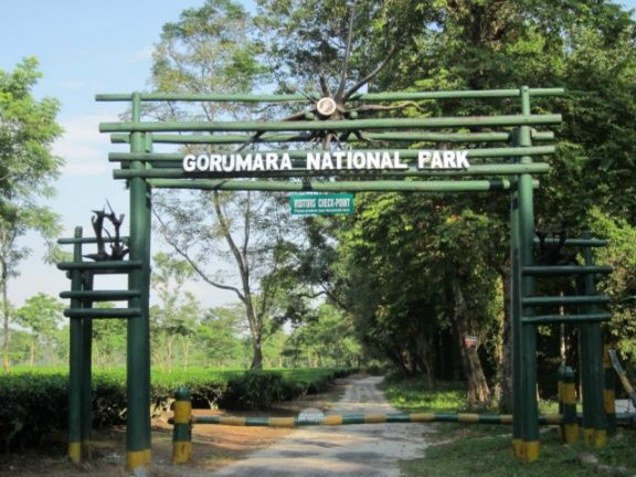 gorumara-national-park-india-india1152_13313977852-tpfil02aw-22428.jpg