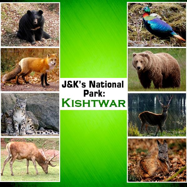 kishtwar-National-Park-copy