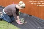 new to gardening first garden first house