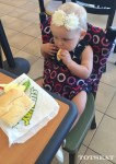 totseat washable highchair