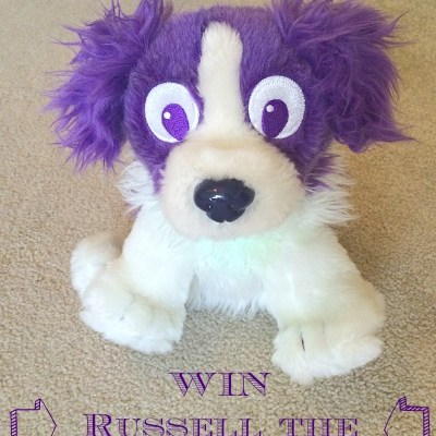 Russell the light up Dream Sheepdog