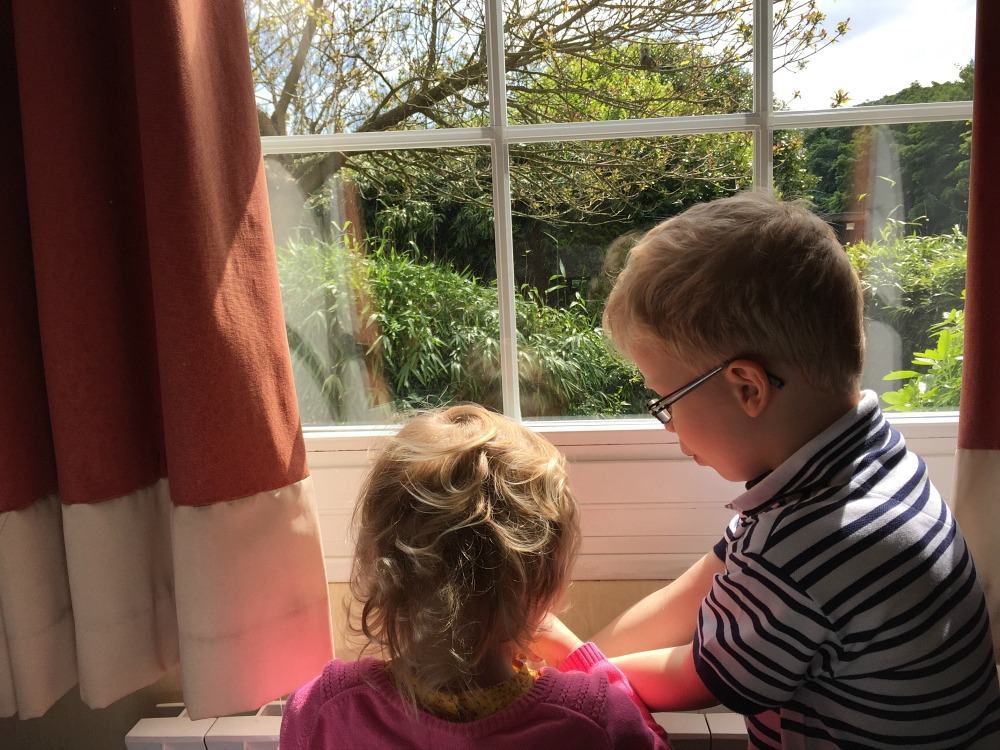 Two young children next to a window
