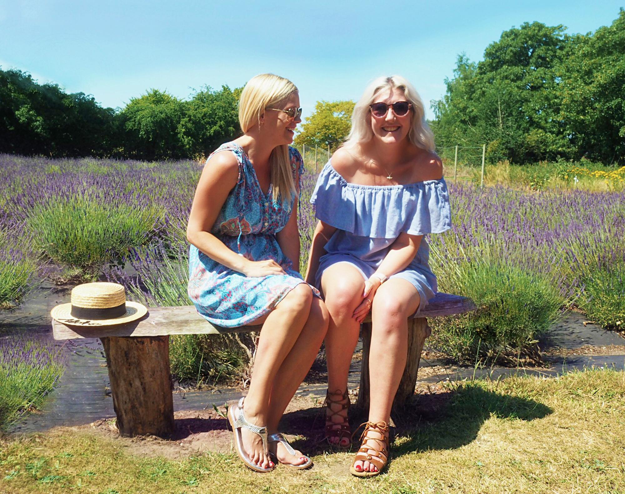 Swettenham Arms Lavender Meadow