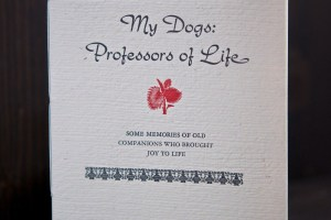 My Dogs Professors of Life cover photo