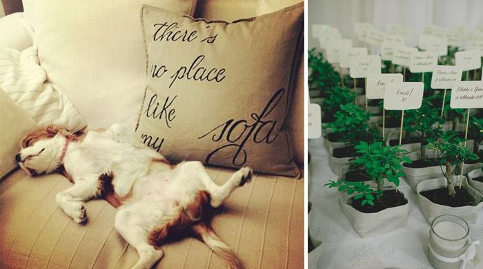 """Coussin pour le canapé couleur crème """"There's no place like my sofa"""" & Décorations pour un mariage réalisées par une calligraphe - Avis cliente"""