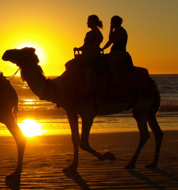 "On... camels? ""Cable Beach Sunset Camel Ride"" by Binarysequence - Own work. Licensed under CC BY-SA 3.0 via Commons."