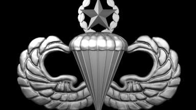 Expert Parachutist Wings