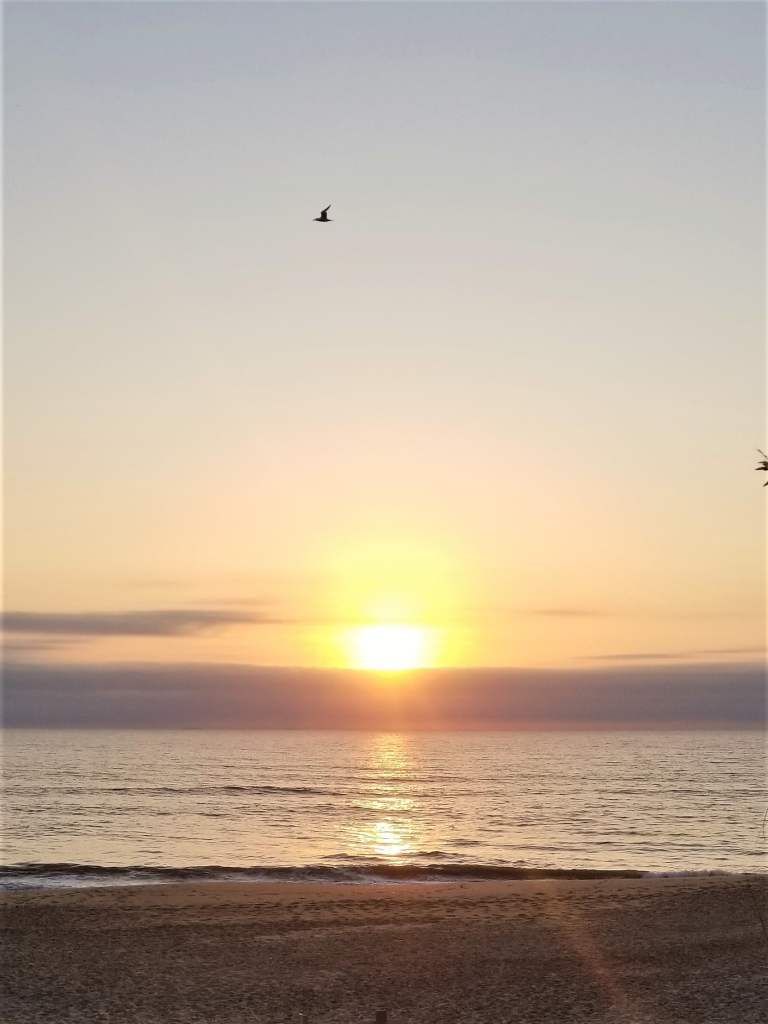 dam neck beach sunrise
