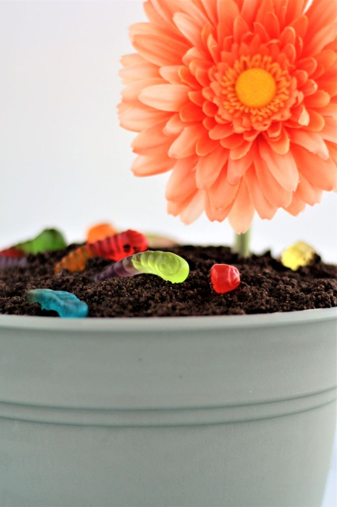 up close shot of flower pot filled with gf dirt cake