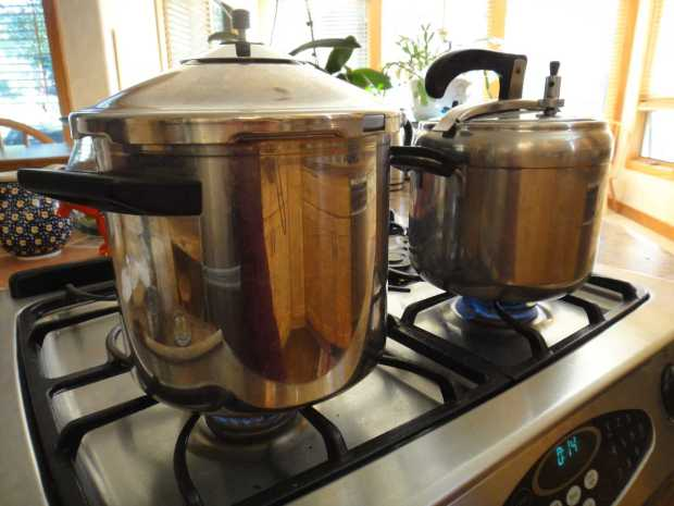Stovetop Pressure cookers for How to Cook Beets in a Pressure Cooker