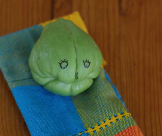 chayote toothless face thinking about chayote chile soup