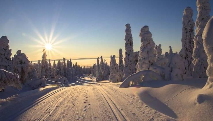 viaggi per vedere l'aurora boreale nella Lapponia finlandese