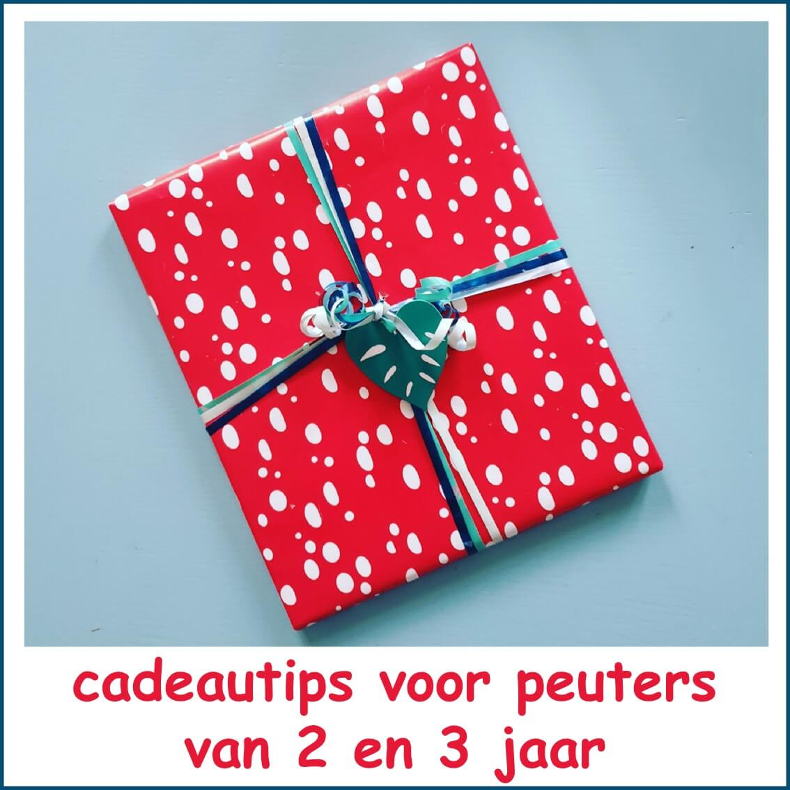 Beste Peuter verjaardag: cadeau ideeën voor kinderen van 2 of 3 jaar NT-55