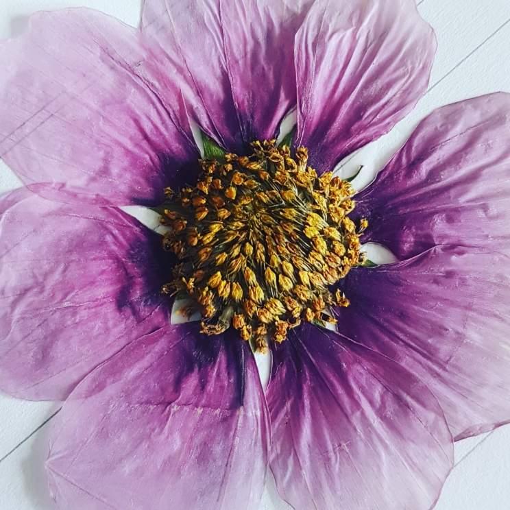 Bloemen zelf drogen om mee te knutselen. Met gedroogde bloemen kun je de mooiste dingen maken. Je kunt bloemen tijdens het drogen platdrukken of juist in hun vorm laten. Platte droogbloemen kun je op papier plakken. Gewone droogbloemen kun je bijvoorbeeld in een vaas zetten.