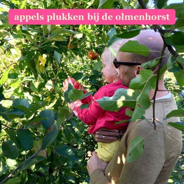 Landgoed de Olmenhorst: met kids appels plukken op een mooie herfstdag