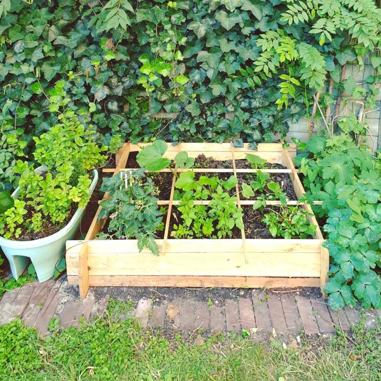 Tuinieren met kids: vierkante meter moestuinbak
