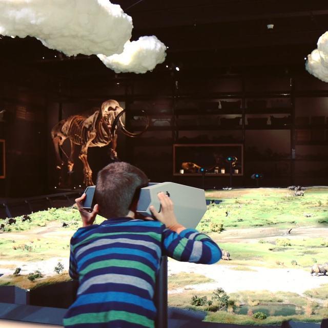 Museum Naturalis met kinderen: de ijstijd