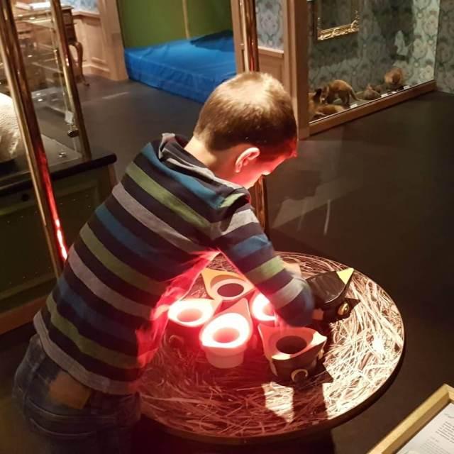 kinderen leren over voorplanting in Museum Naturalis
