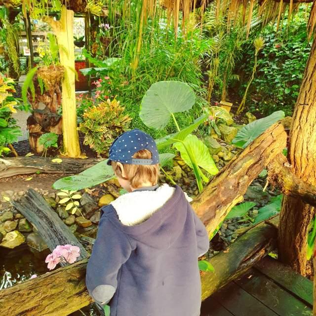 planten en dieren kijken