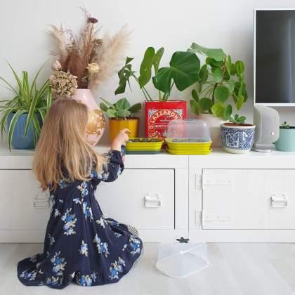 Onze kids bucketlist voor de meivakantie, leuke activiteiten voor kinderen: AH moestuintjes