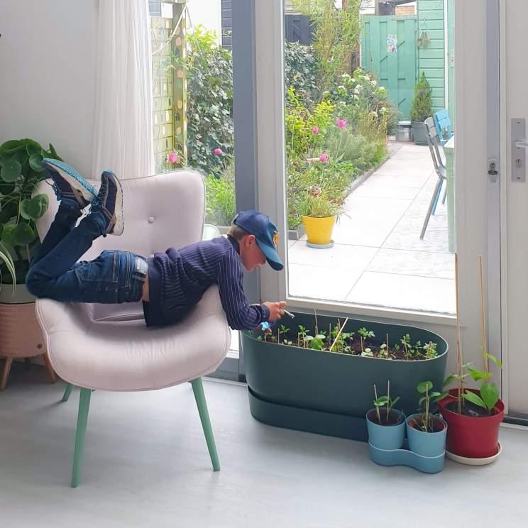 De zithoek loopt ook echt over in de tuin. Dat komt doordat de lichte vloer ongeveer dezelfde kleur heeft. Maar ook omdat er binnen en buiten veel groen is. De stoel krijgt telkens een andere kleur poten en ook regelmatig een nieuwe plek. Nu staat hij op dit fijne plekje voor het raam. De groene plantenbak staat inmiddels buiten vol moestuintjes. Hij staat op wieltjes, heeft een geïntegreerd waterreservoir en is van gerecycled kunststof gemaakt.