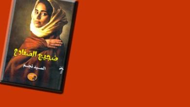 صورة أدهم مسعود يكتب .. سيمياء الشخصية والعلامات المضمرة في رواية ضجيج الضفادع للسيد نجم