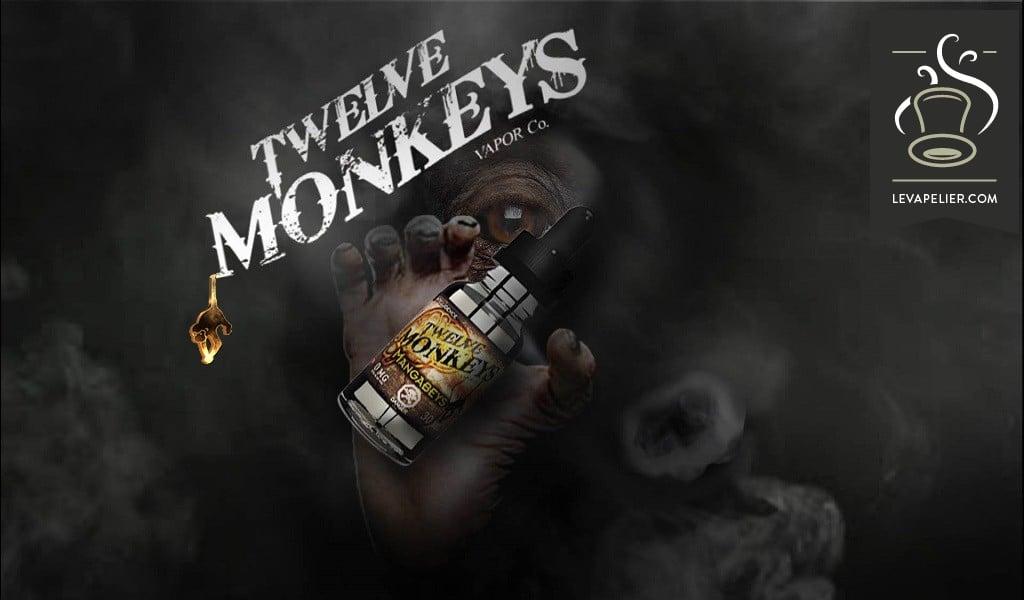 Mangabeys (gamme Intelligence) par Twelve Monkeys