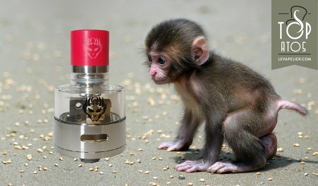 Monkey King RDA par Oumier