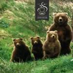 Big Bear par Ehpro