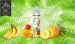Tropical (Gamme Fruit Style) par e-Chef