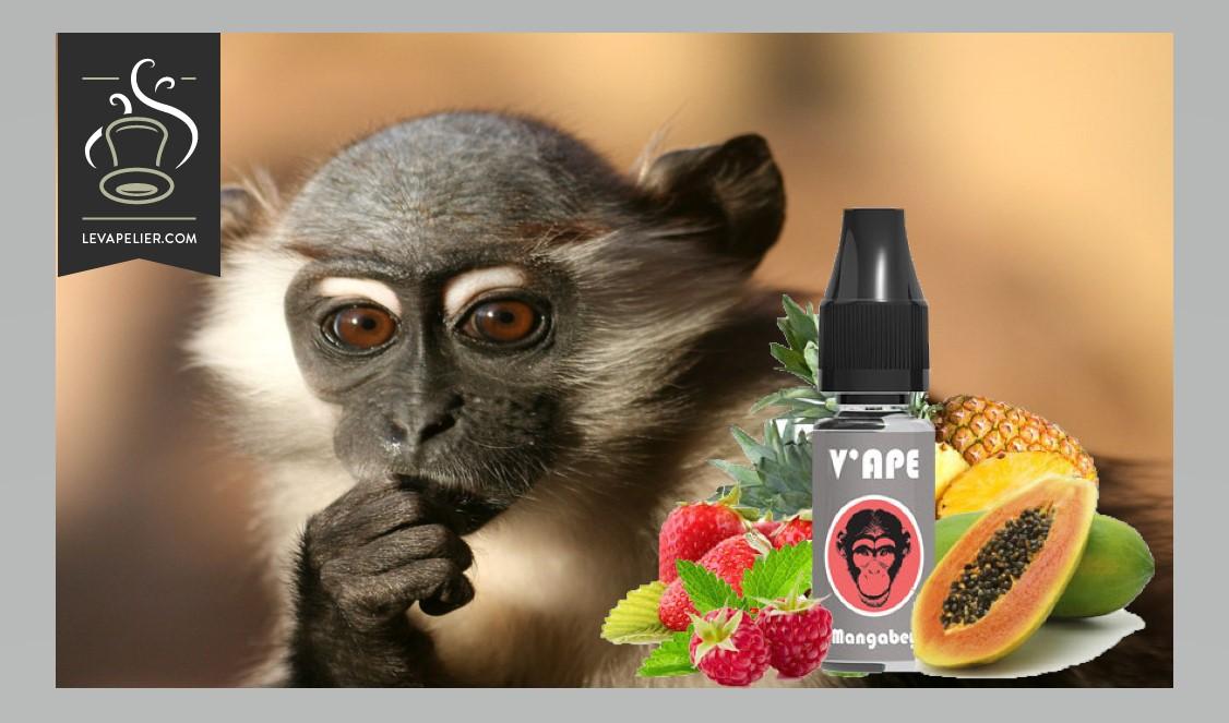 Mangabey (Gamme Grey) par V'APE