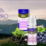 Myrtille Pyreneeën door Cirro