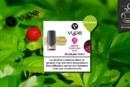 Fruits des Bois (gamme Vpro) par Vype