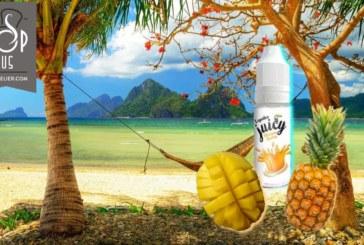 Juicy Mango Ananas (Gamma Tentation) van Liquideo