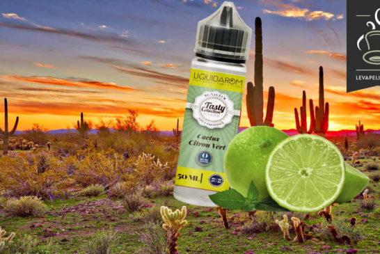 Lime Cactus (Tasty Collection Range) di Liquidarom