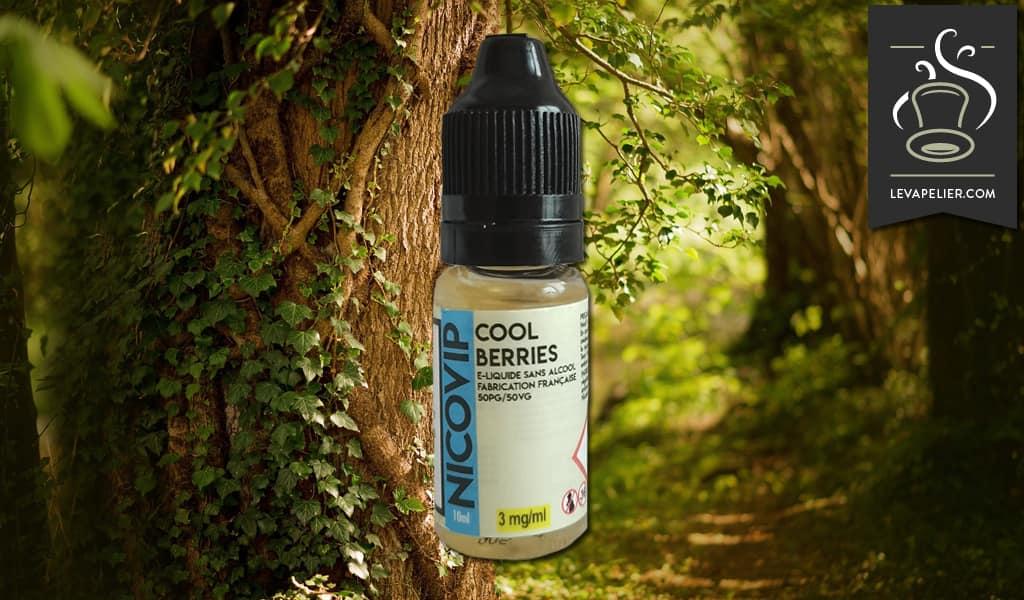 Cool Berries par Nicovip