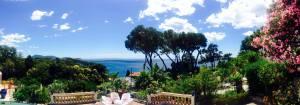 Les Pins Penchés, Toulon