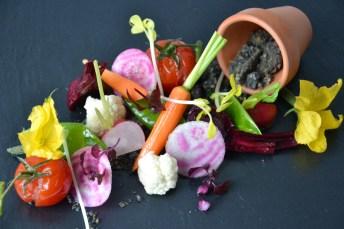 Légumes primeurs cuits et crus, eau de tomates, olives du Moulin Baussy, huile de basilic