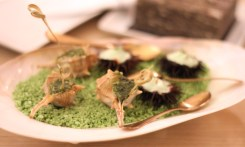Oursins à l'écume de fenouil, escargots de mer farcis au persil