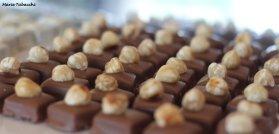 Les sucreries de Lisandre, Salernes, Dracénie
