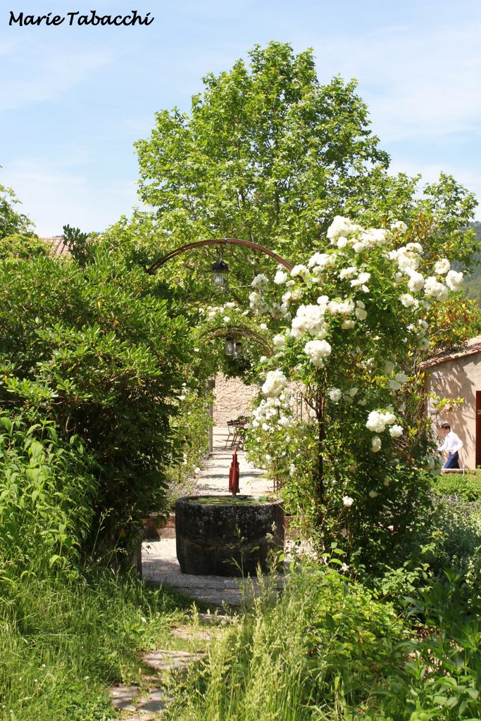 Bastide de Moustiers, Ducasse